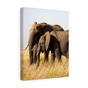 Elephant Family Kenya - Canvas