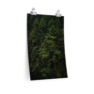 Forest - Vertical Print