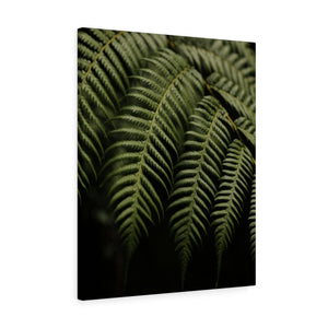 Hang Loose Hawaiian Leaves - Canvas