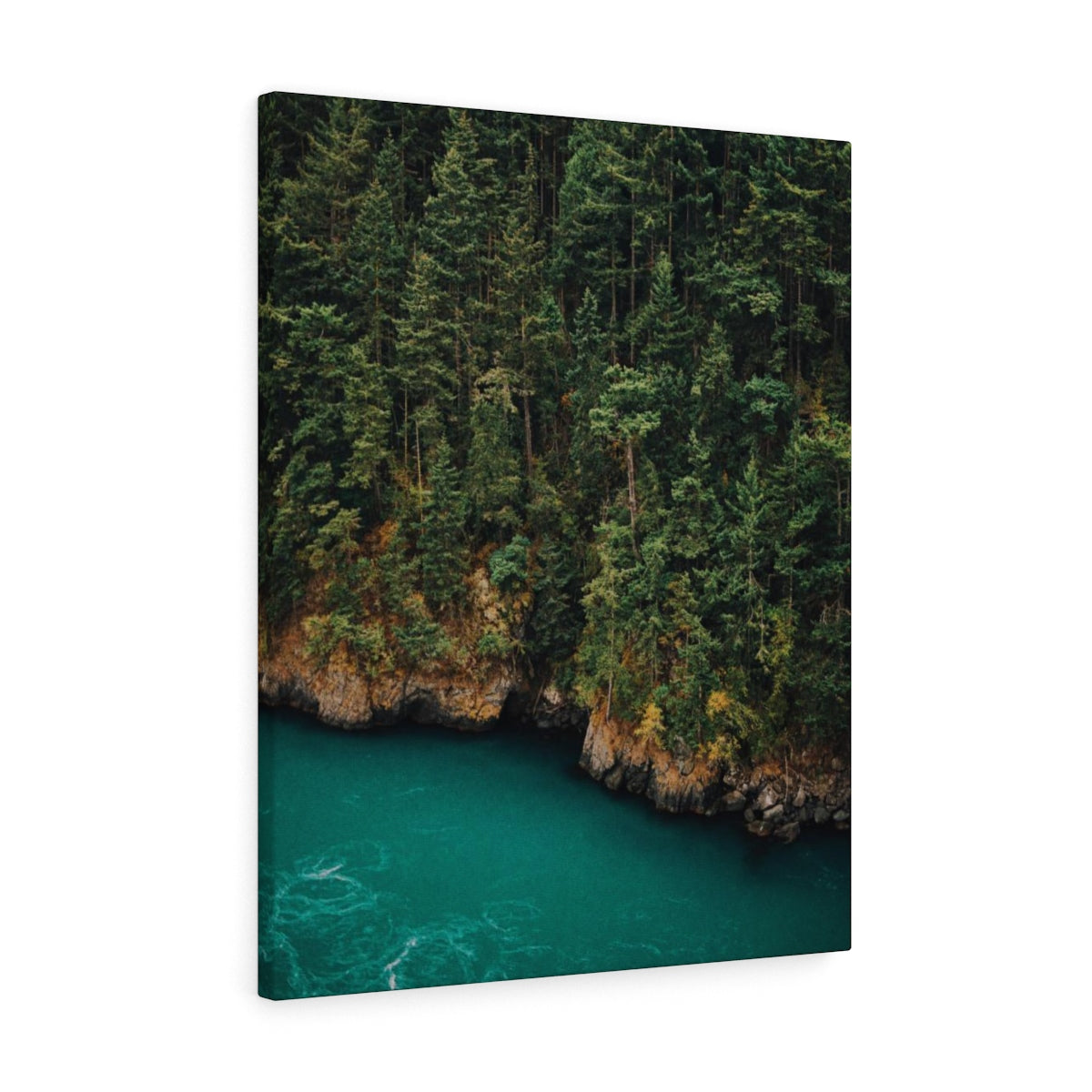 Forested River - Canvas