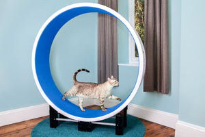 Ferris Cat Exercise Wheel GEN5