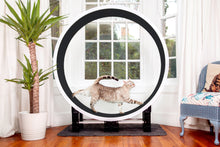 Load image into Gallery viewer, Ferris Cat Exercise Wheel GEN5