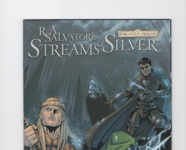 Forgotten Realms: Streams of Silver #1 VF/NM