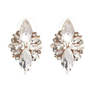 Dafina Crystal Stud Earrings - Yesines.com