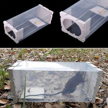 sampurchase  Home Rat Trap Heavy Duty Snap-e Mouse Pest Animal Trap-east Set Mice Rodent Repeller Catch Bait Hamster Mouse Trap
