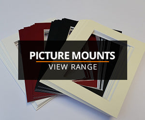 Picture Mounts