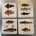 Drinks Coasters Set of 4 (FISHES)
