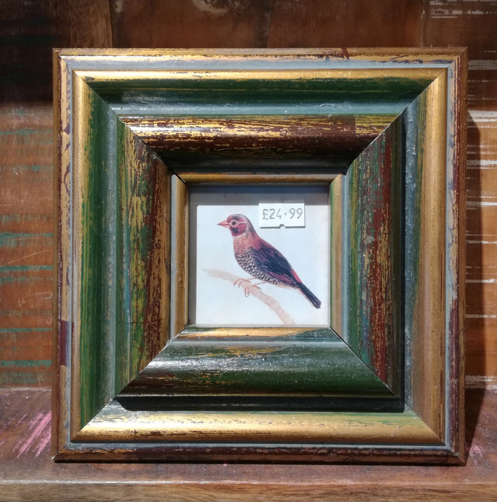 Rustic photo frame Green