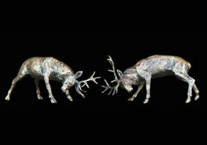 Bronze Stags Rutting