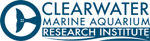 Clearwater Marine Aquarium Research Institute