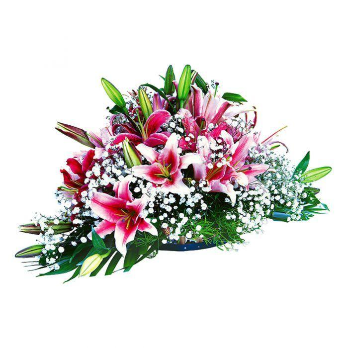 Blushing Beauties - TCS Sentiments Express