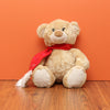 Be My Valentine Bear (12 Inch) - TCS Sentiments Express