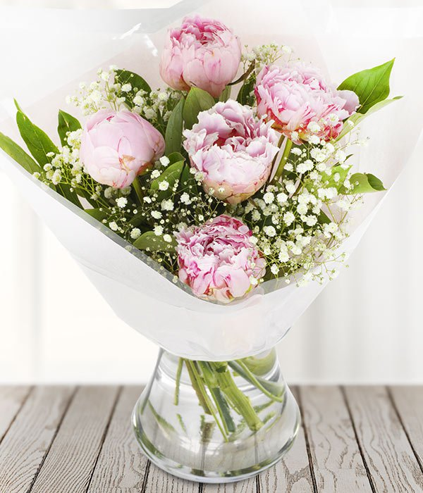 Peonies - TCS Sentiments Express