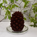 Brown beeswax pine-cone ornamental candle