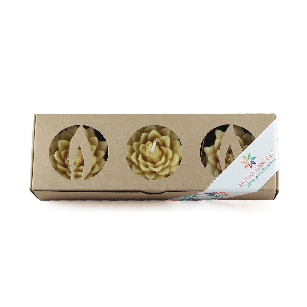 3 pack of natural beeswax floating lotus candles