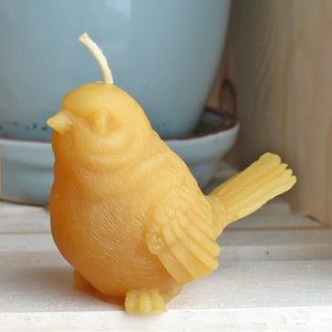 Beeswax sparrow bird candle with plant in background