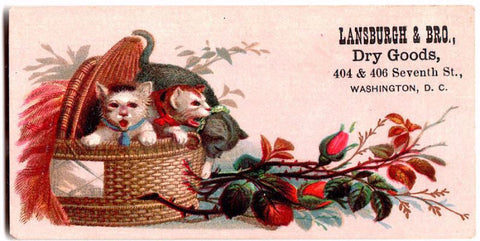 1880 James & Gustav Lansburgh, Washington DC Advertising Trade Card