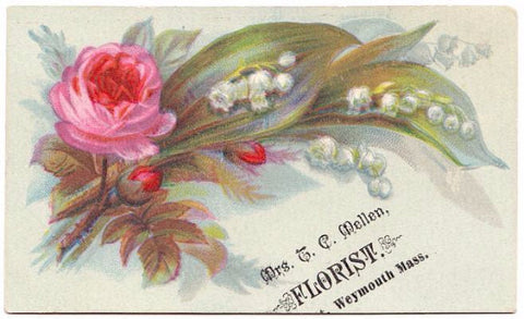 1880 Mrs Thomas Mellen (Mary Jane Lamb) Weymouth MA Florist Trade Card