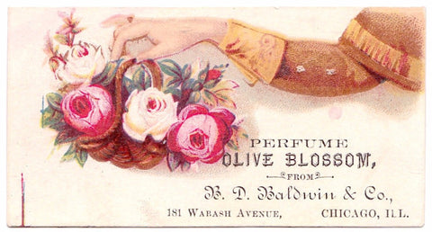 1880 E.J. Weeks & Co Trade Card, Jackson, Michigan: Eugene James Weeks