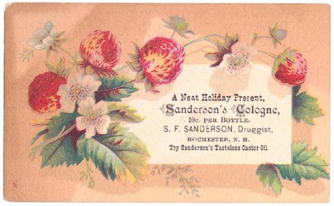 1880's SF Sanderson or Stephen F Sanderson Druggist Card, Rochester NH