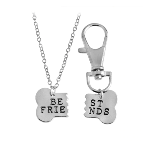 Best Friends Necklace & Collar Charm Set