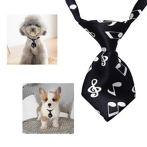 Music Note Pet Tie