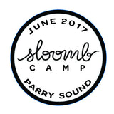 2017 CAMP BADGES