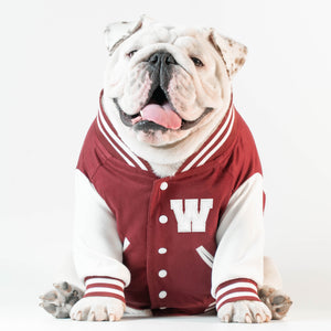 WONTON VARSITY BOMBER Jacket in burgundy (Customizable Chest Letter)