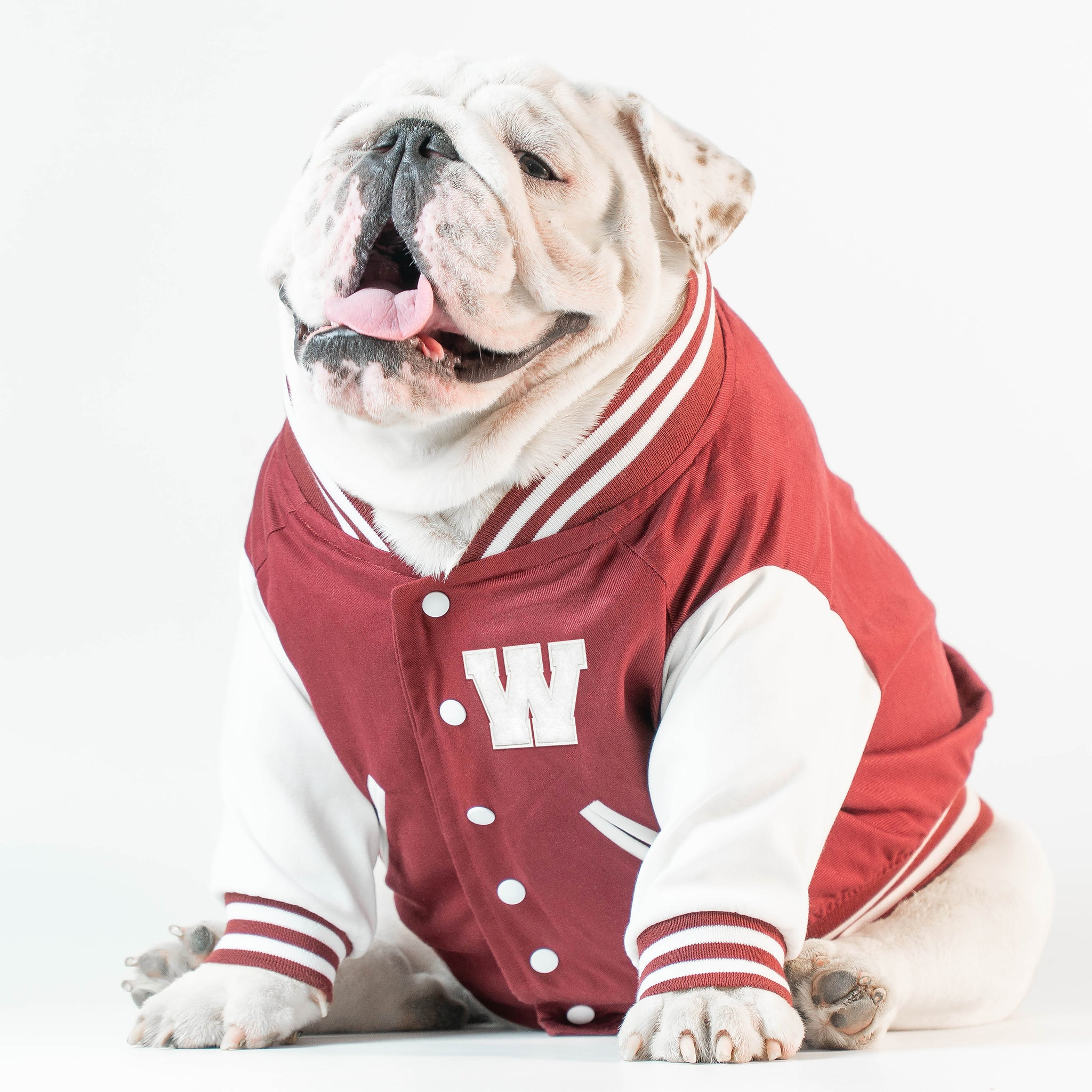 WONTON VARSITY BOMBER Jacket in burgundy (Customizable Chest Letter) - WontonCollection