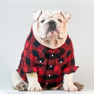WONTON CHECKED LUMBERJACK Shirt - WontonCollection