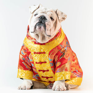 WONTON CHINESE NEW YEAR Outfit (LIMITED EDITION) - WontonCollection