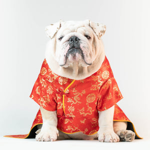WONTON CHINESE NEW YEAR Dress (LIMITED EDITION) - WontonCollection