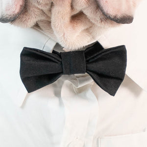 WONTON BOW TIE in black - WontonCollection