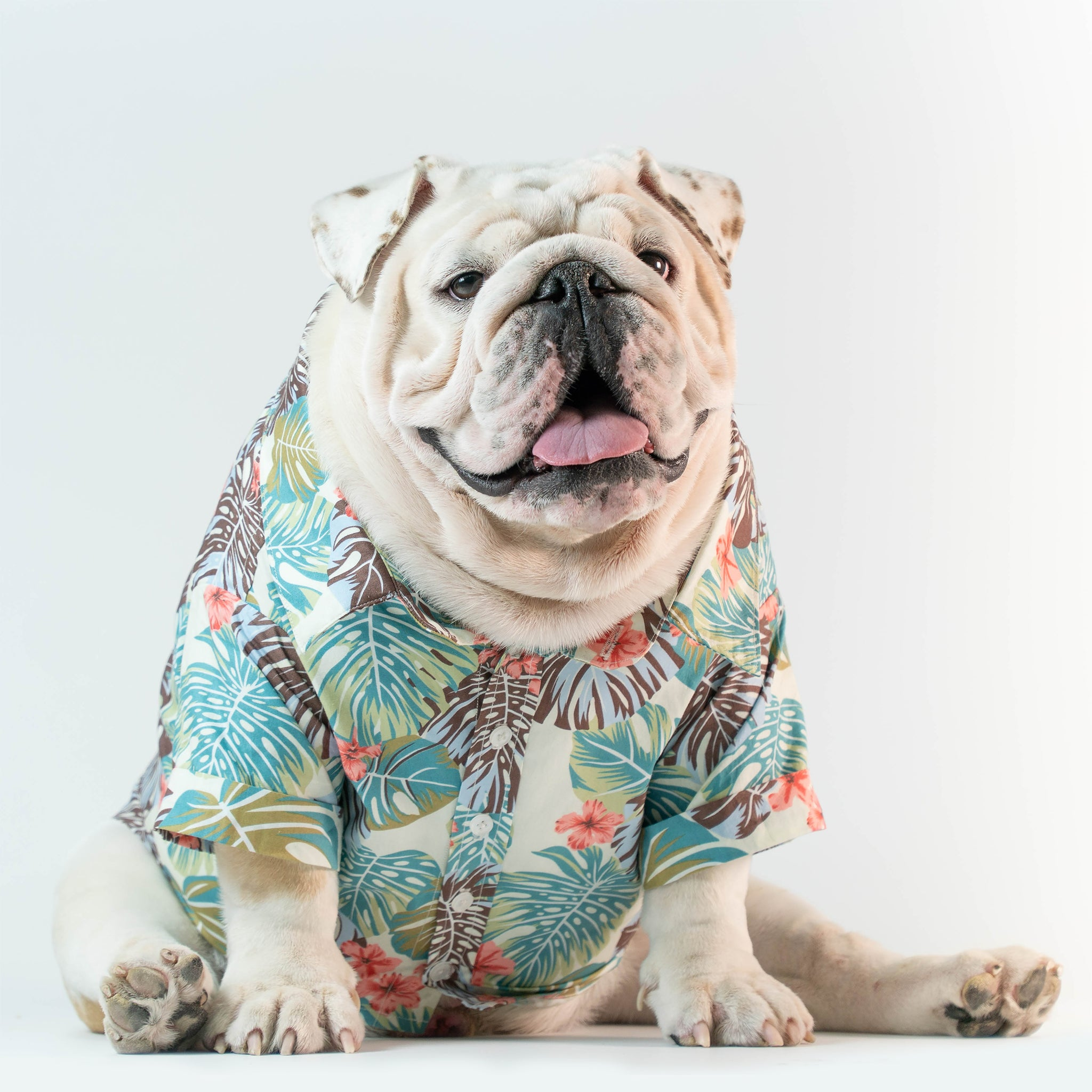 WONTON DESIGN Mr. Summer shirt with short sleeve in green - WontonCollection