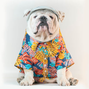 WONTON DESIGN Mr. Summer shirt with short sleeve - WontonCollection