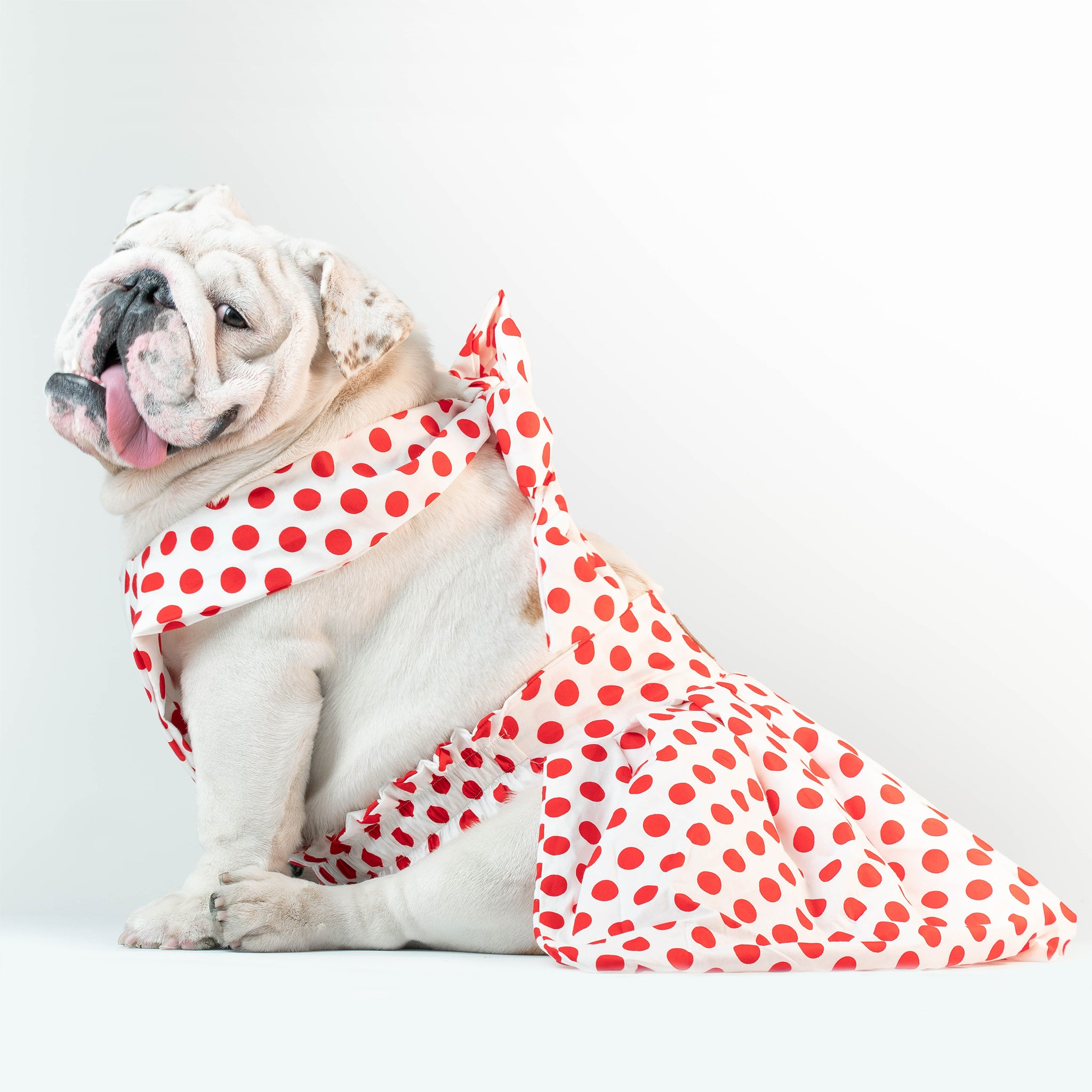 WONTON ONE DRESS with red polka dot print in white - WontonCollection
