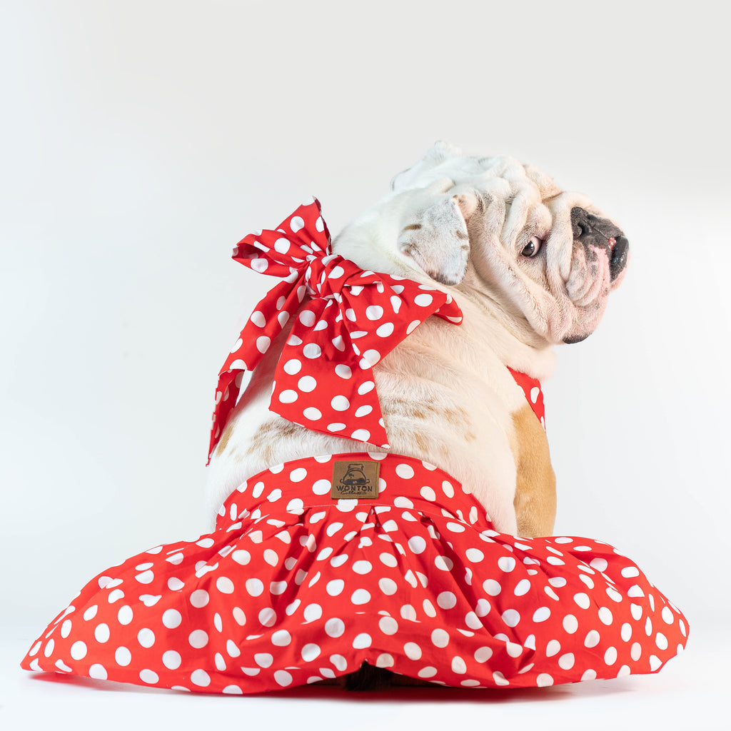 WONTON ONE DRESS with white polka dot print in red - WontonCollection
