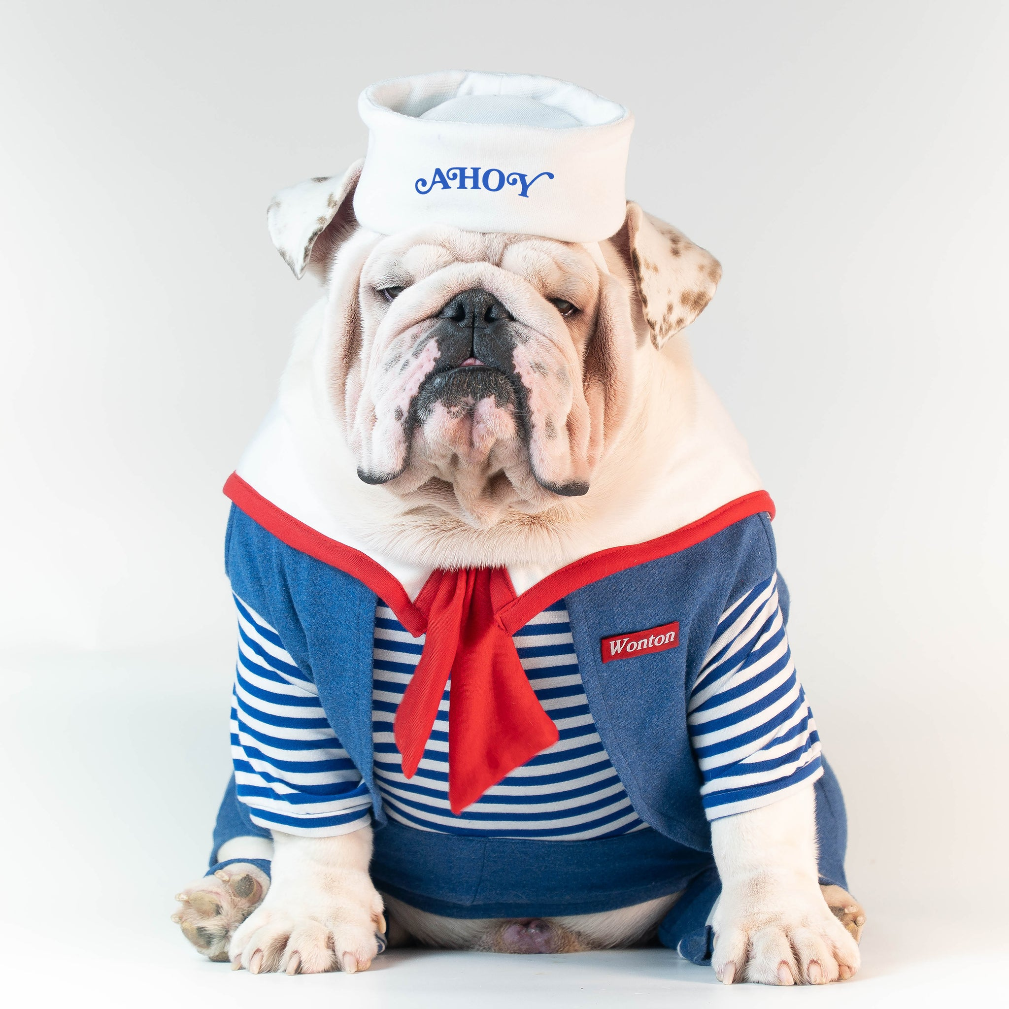 WONTON TRICK or TREAT, ROBIN SCOOPS AHOY Pajama - WontonCollection