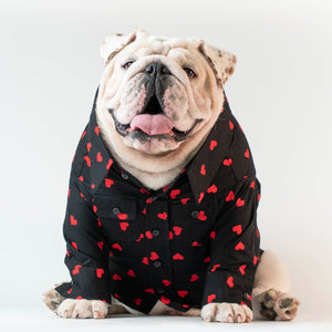 WONTON MY VALENTINE Shirt in black - WontonCollection