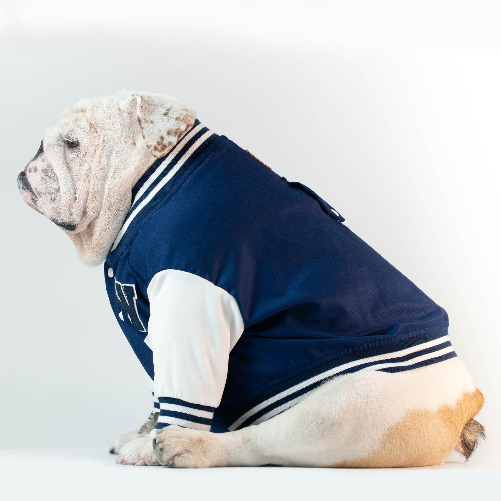 WONTON VARSITY BOMBER Jacket in navy (Customizable Chest Letter) - WontonCollection