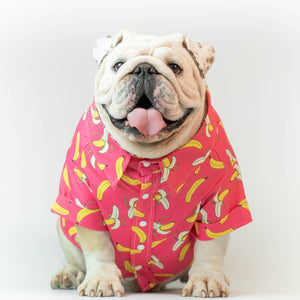 WONTON DESIGN Banana shirt with short sleeve in pink (Pima cotton)