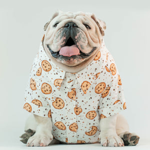 WONTON DESIGN Cookie shirt with short sleeve in white (Pima cotton)
