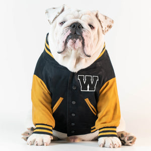 WONTON VARSITY BOMBER Jacket in black and yellow (Customizable Chest Letter)