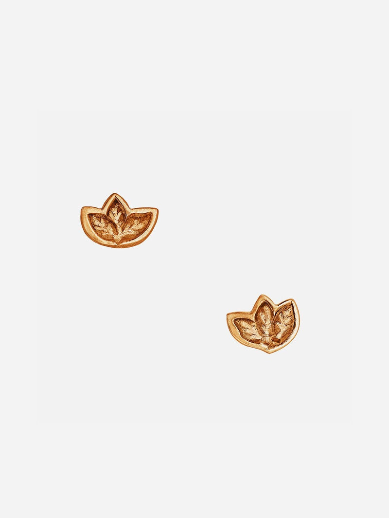 JULIA THOMPSON JEWELLERY Fairtrade Rose Gold Leaf Stud Earrings | 9ct