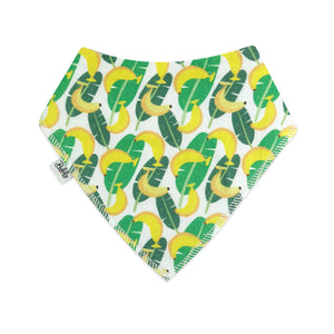 Bandana Bibs 4 Pack - Tropical