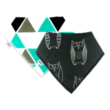 Load image into Gallery viewer, Bandana Bibs 2 Pack - Owl