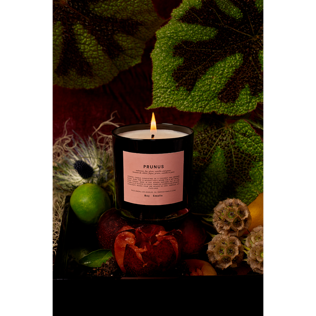 Prunus Candle - The Edition Shop