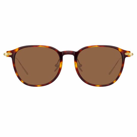 Linear 16 C10 D-Frame Sunglasses in Tortoiseshell Frame - The Edition Shop