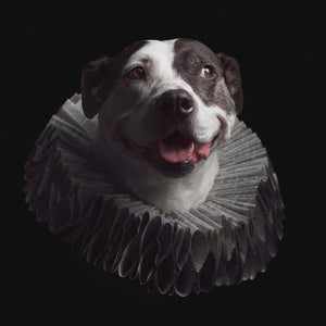 the Queen in Paper Hats | Art for Dog Lovers