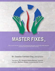 Master Fixes Book